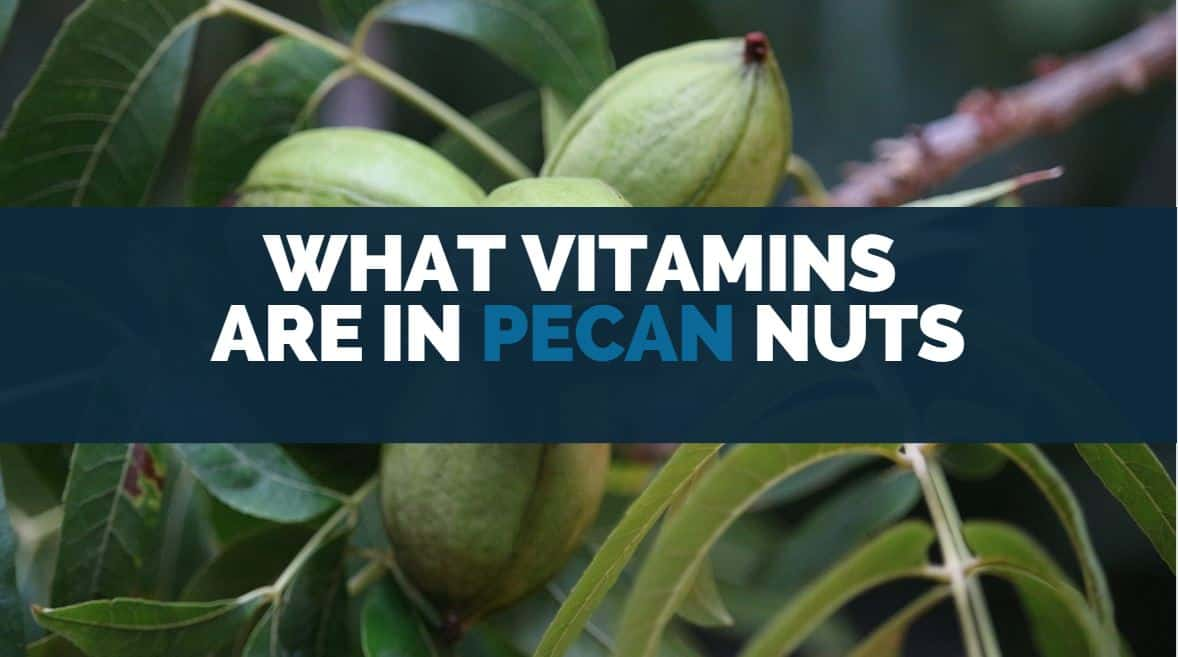 what vitamins are in pecan nuts