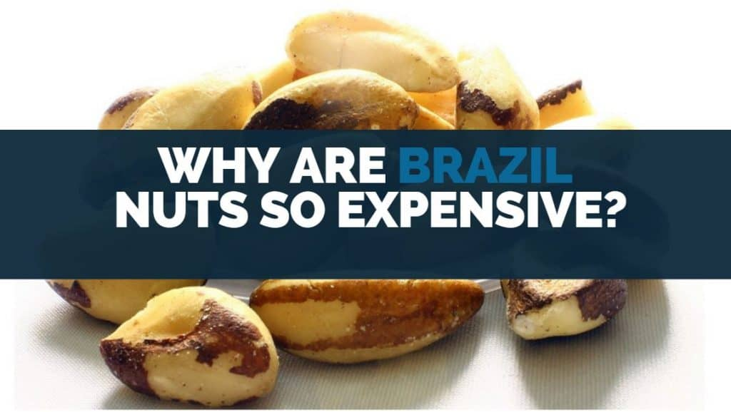 why are Brazil nuts so expensive