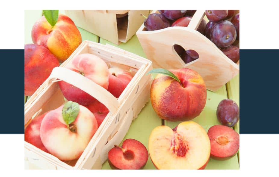 Are Stone Fruit Seeds Poisonous