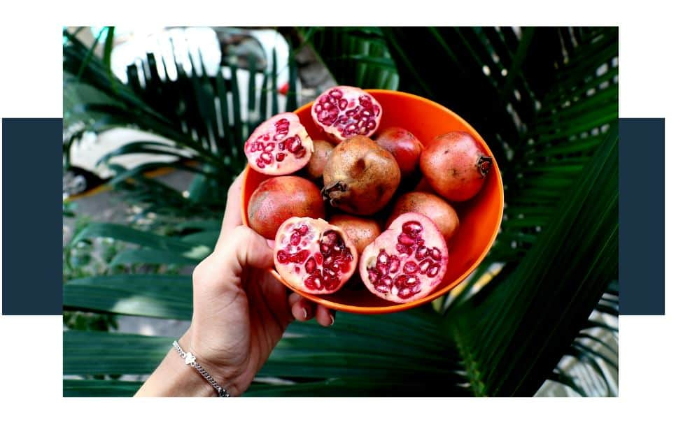 What Happens if We Eat Pomegranate Daily