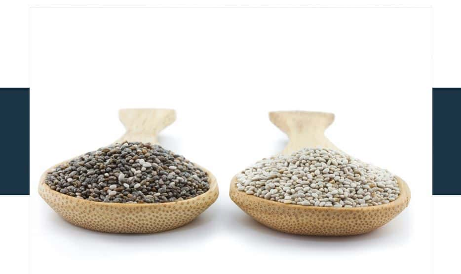 What's the difference between black and white chia seeds