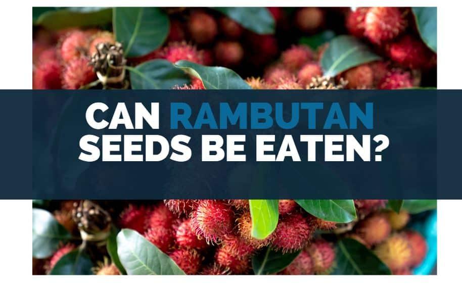 can rambutan seeds be eaten