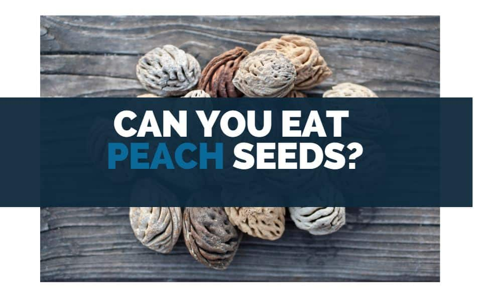 can you eat peach seeds