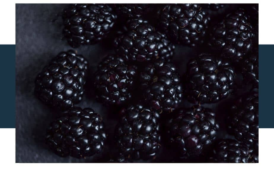 negative side effects of blackberries