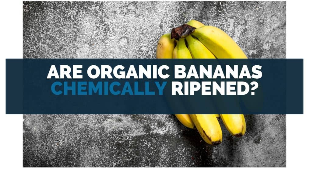 Are Organic Bananas Chemically Ripened