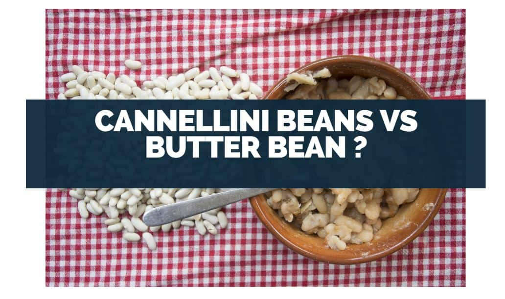 Cannellini Beans vs Butter Beans are they different