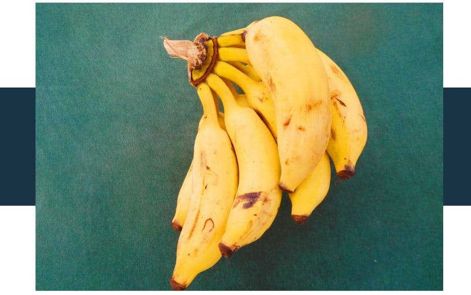 Is a banana a berry or a fruit