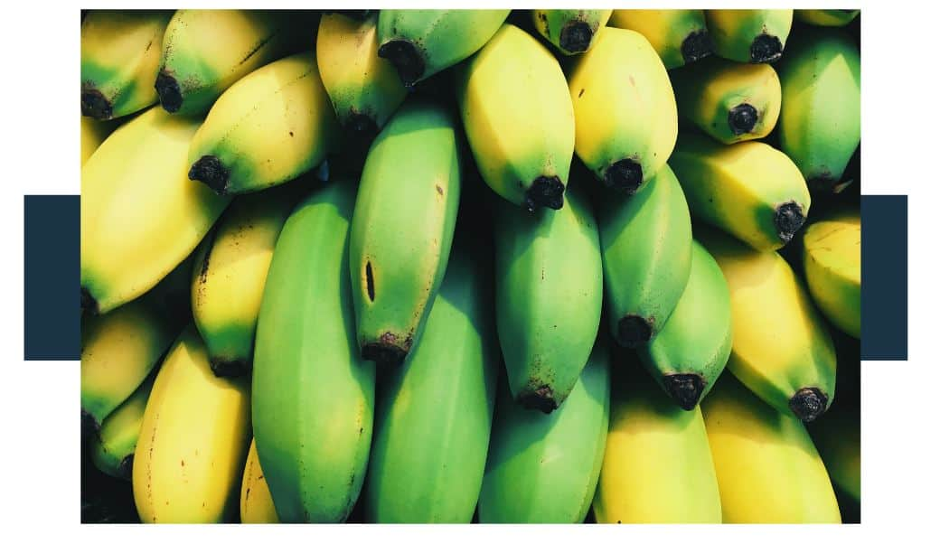 What Chemicals Are Used To Ripen Organic Bananas