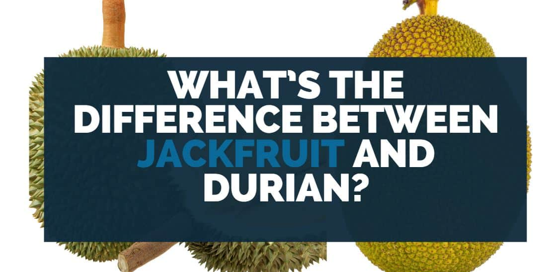 What's the Difference Between Jackfruit and Durian