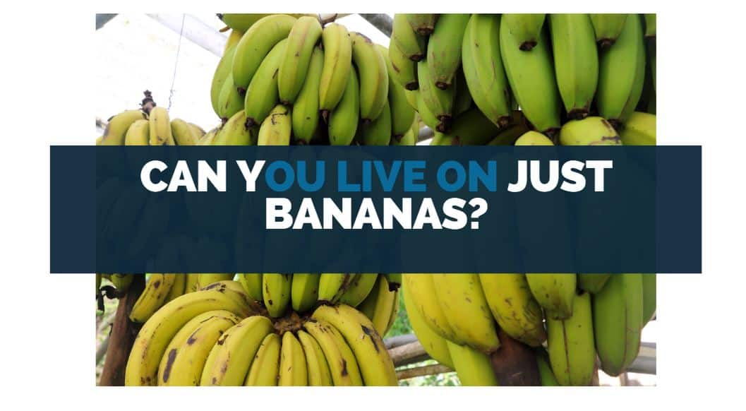 can you live on just bananas