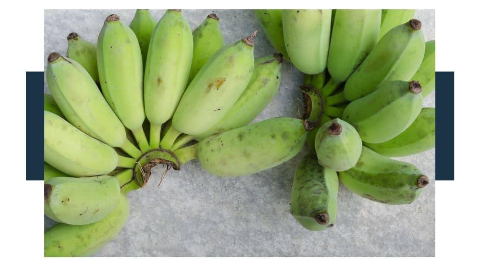 cerified organic herbicides for Bananas