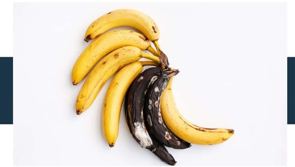 mold growing on a banana looks like