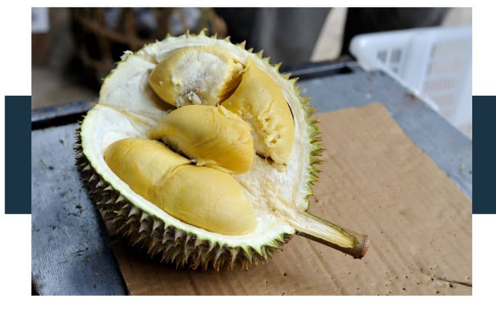 opened durian and its pulp