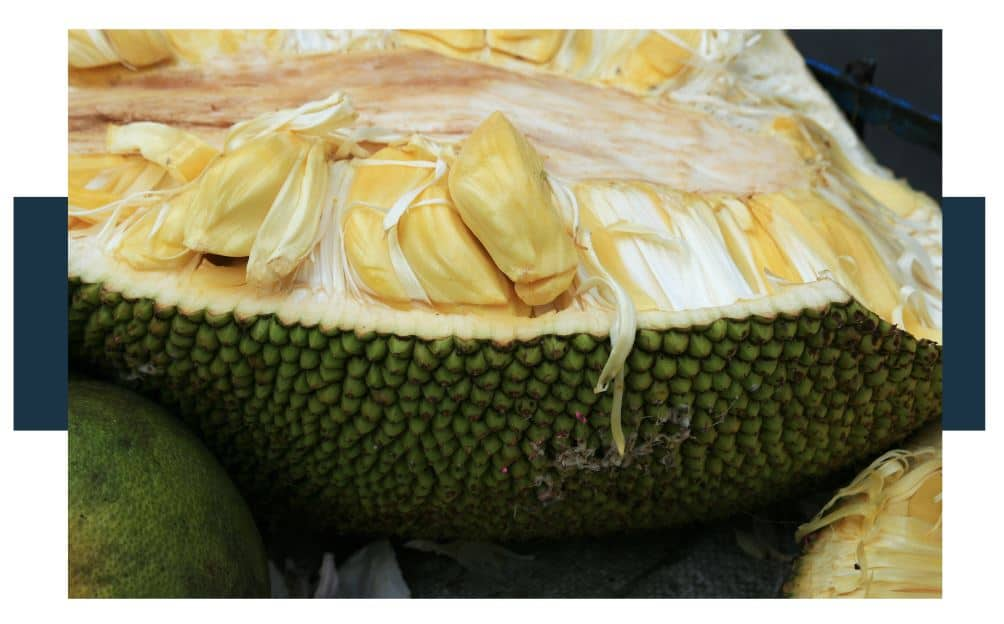 opened jackfruit and pulp