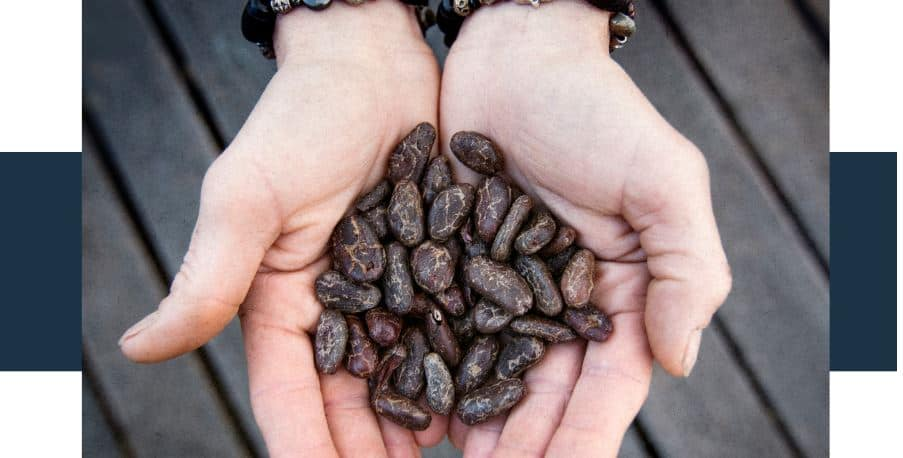 How Much Raw Cacao Is Too Much