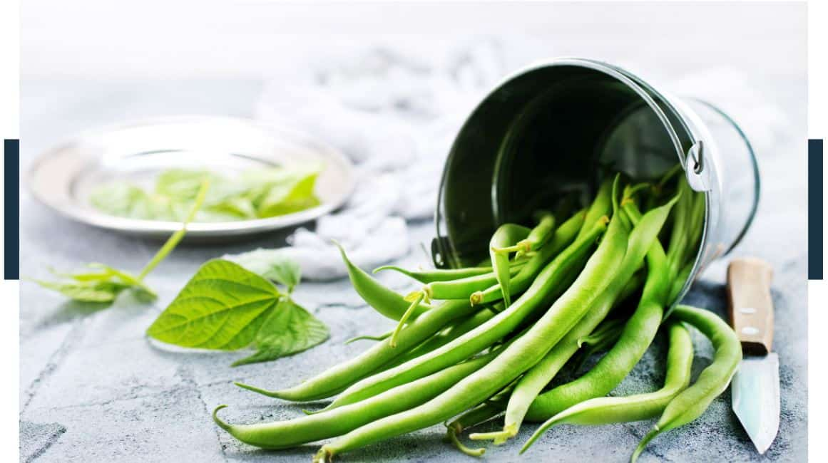 Can Beans Replace Vegetables