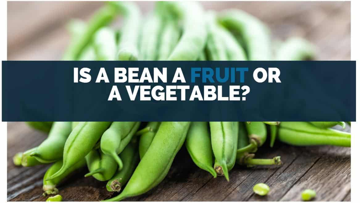 Is A Bean A Fruit Or A Vegetable