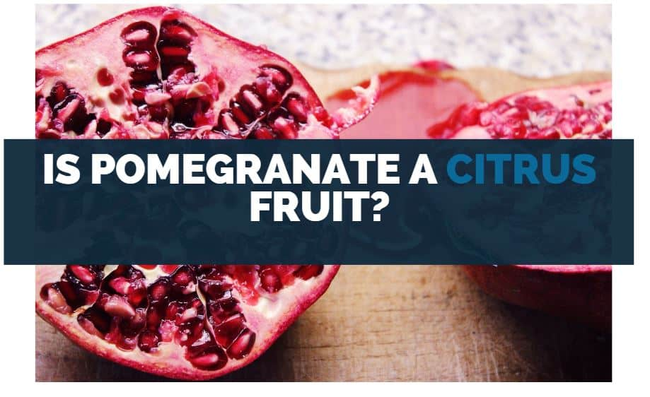 Is Pomegranate a Citrus Fruit