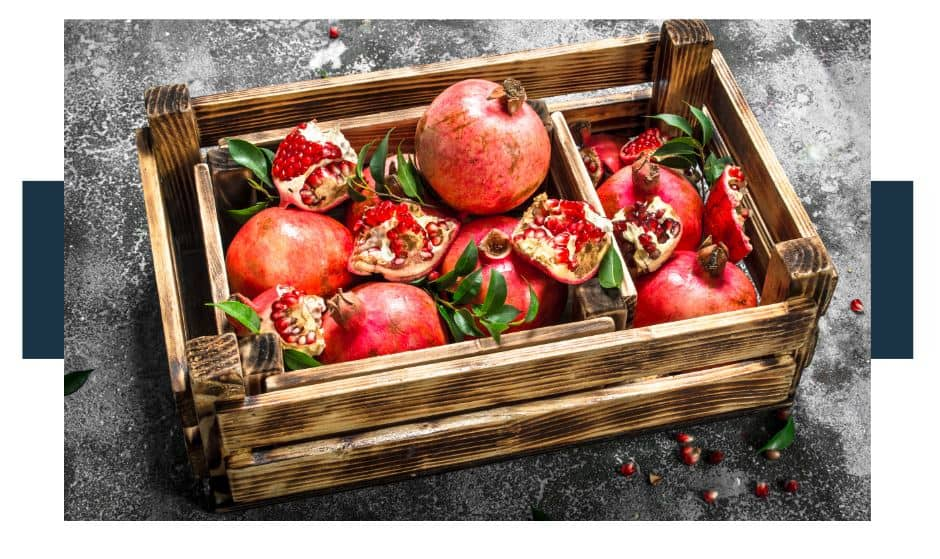 Pomegranate Facts and Information
