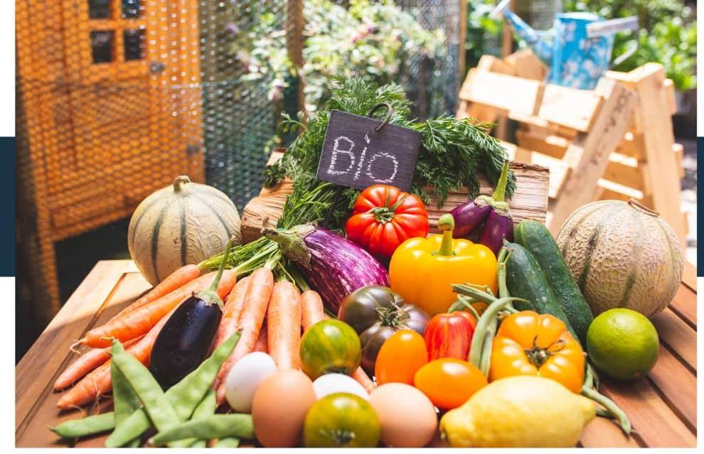 What Makes A Vegetable A Botanical Vegetable