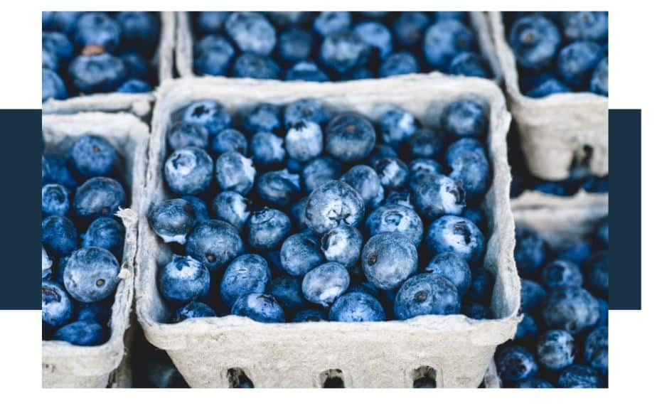 What is the Color of Blueberries