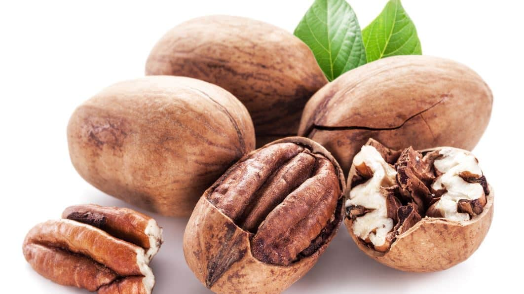 How Many Pecans Should You Eat a Day