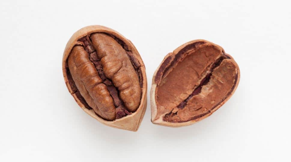 Is Eating Pecans Everyday Bad for You