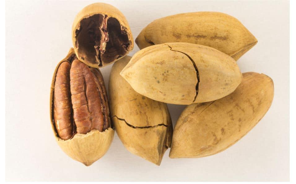 Pecans Provide Optimal Diabetic Relief