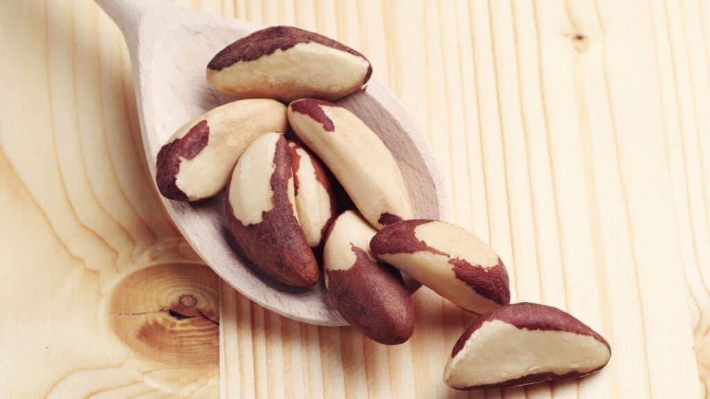 Brazil Nut Plantations