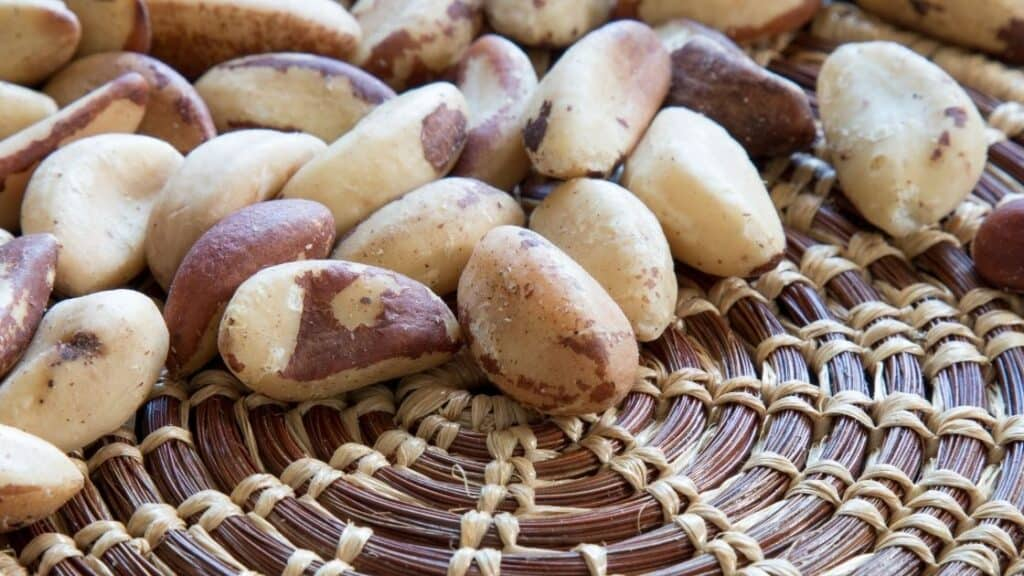 Does Roasting Brazil Nuts Destroy Selenium