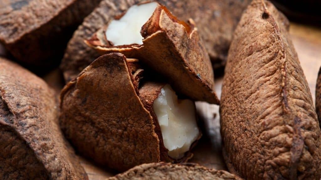 How Much Selenium in 5 Brazil Nuts
