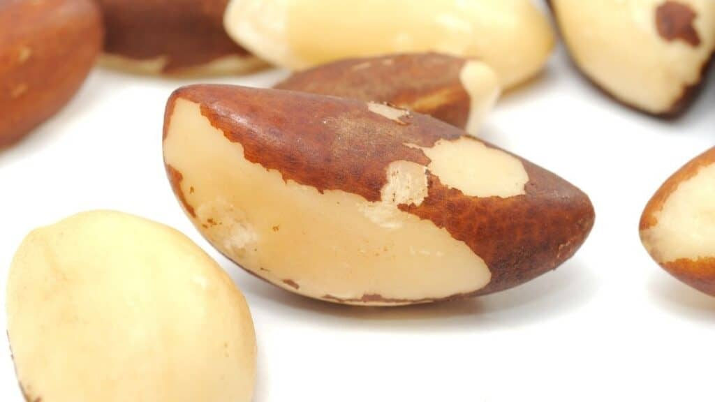 How Much Zinc in Brazil Nuts