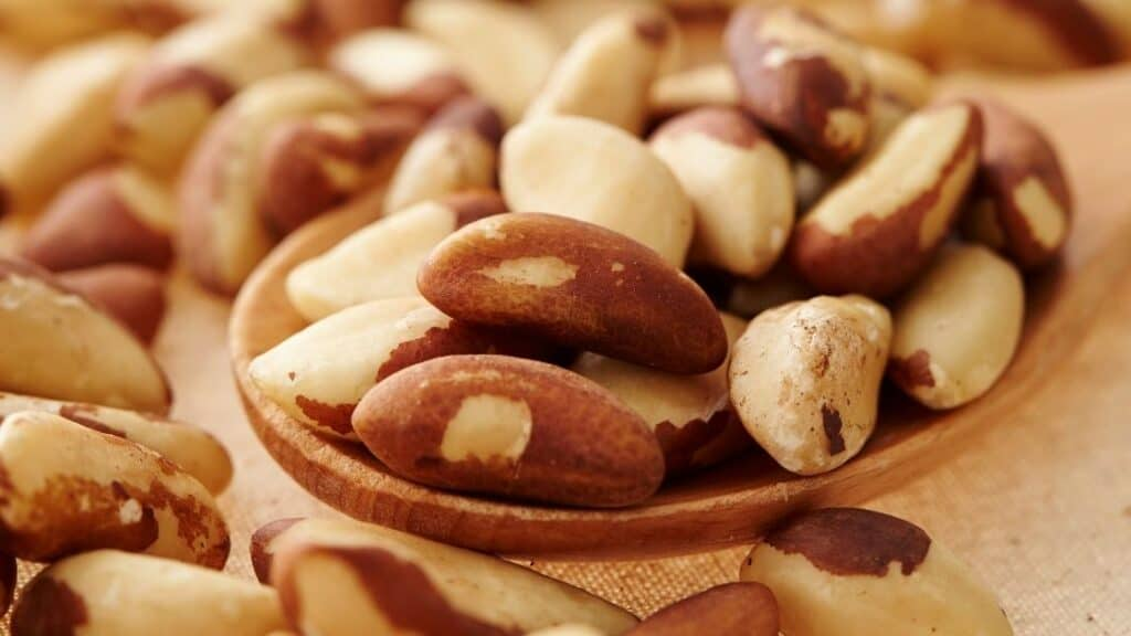 Is Brazil Nut Radioactivity Dangerous