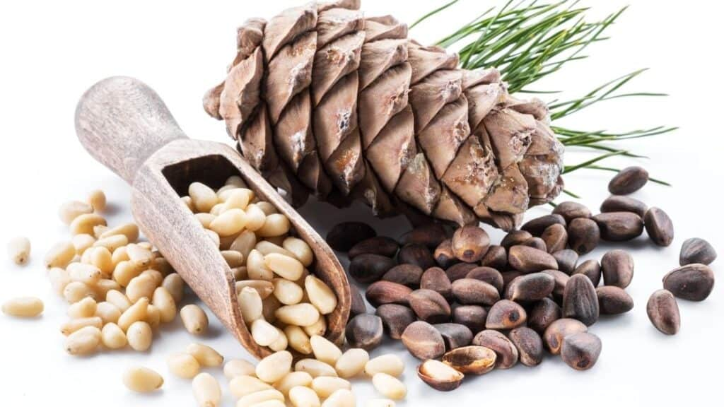 What Happens if You Eat Too Many Pine Nuts