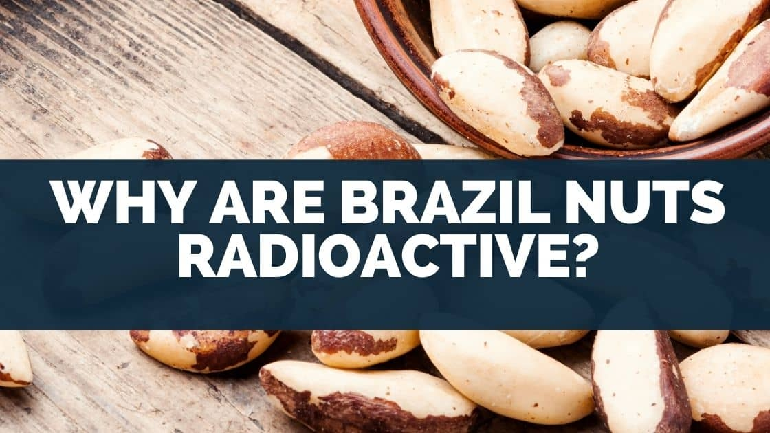 Why Are Brazil Nuts Radioactive