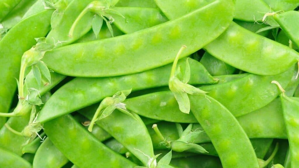 Are snow peas Paleo
