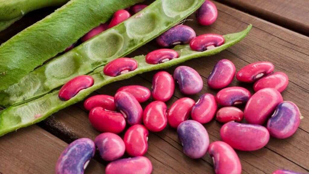 Are Beans Vegetables Or Legumes