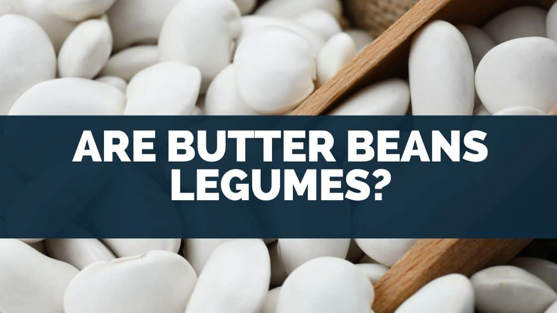 Are Butter Beans Legumes