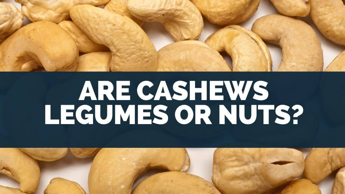 Are Cashews Legumes or Nuts