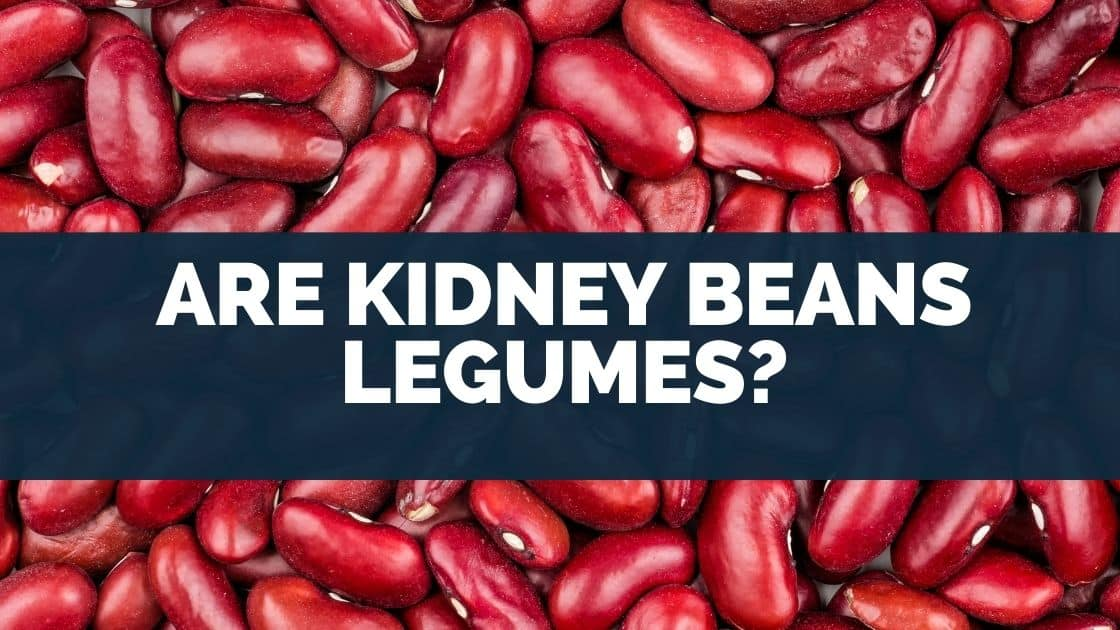 Are Kidney Beans Legumes
