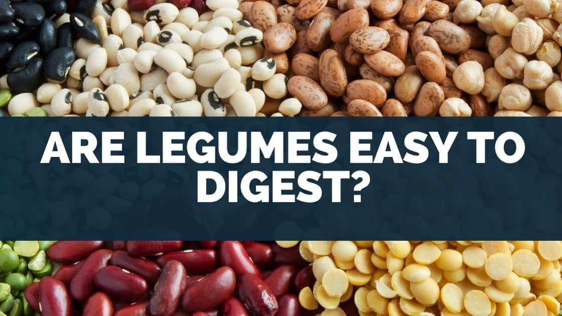 Are Legumes Easy to Digest