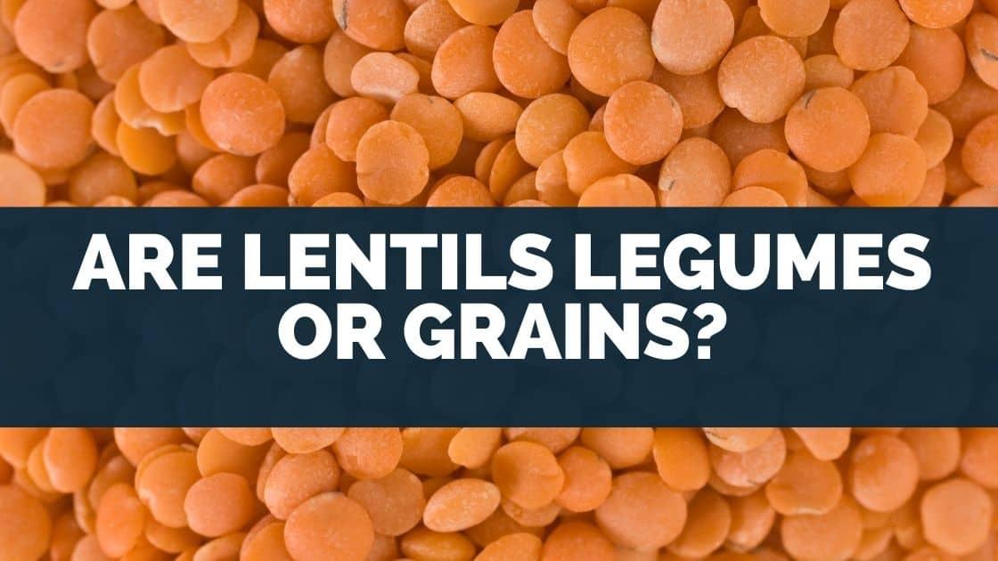 Are Lentils Legumes Or Grains