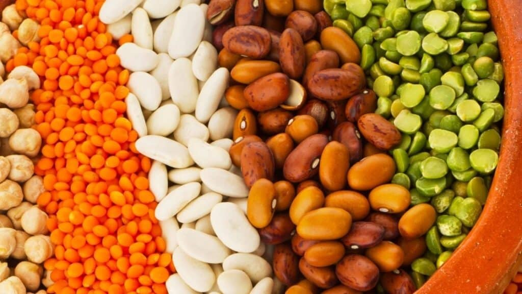 Are legumes low histamine