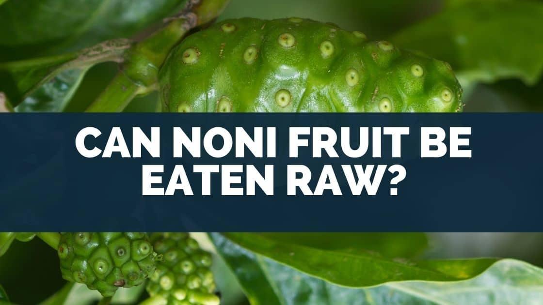 Can Noni Fruit Be Eaten Raw