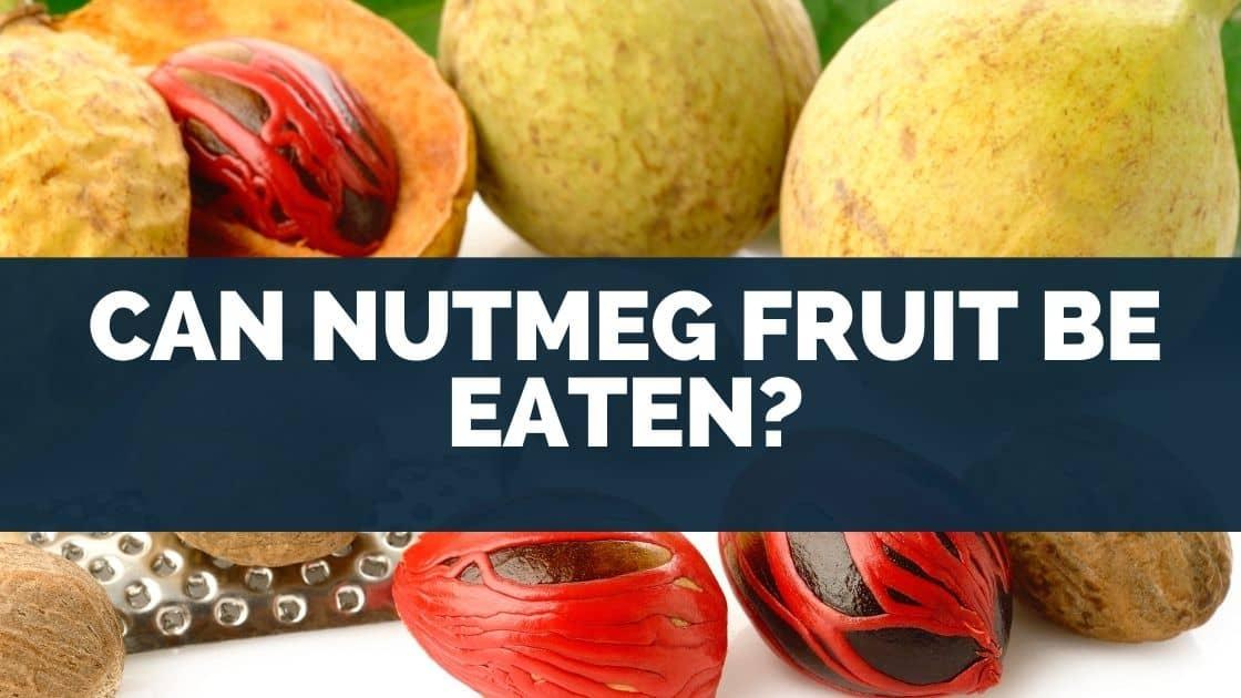 Can Nutmeg Fruit Be Eaten