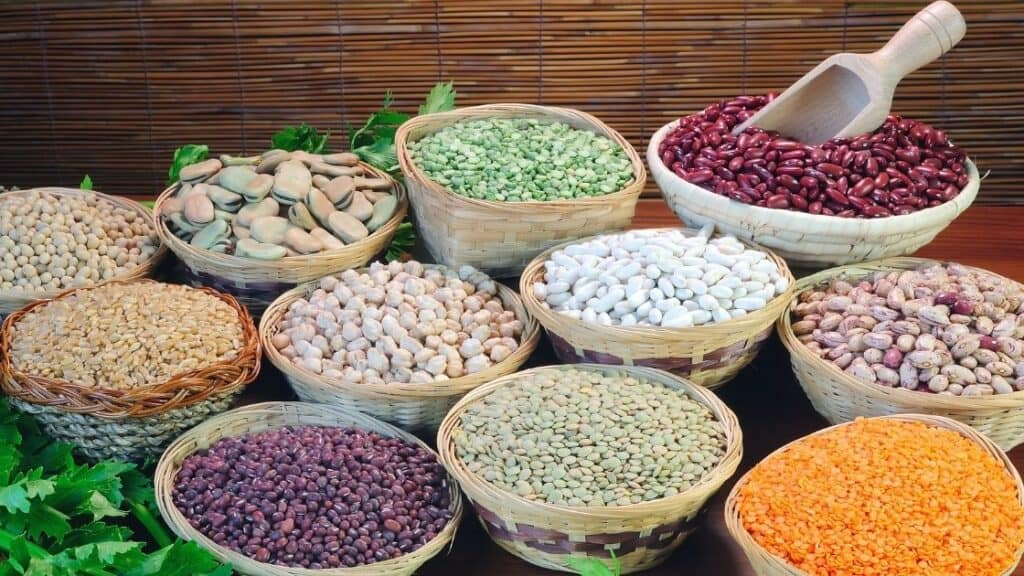Can pulses replace meat in a meal