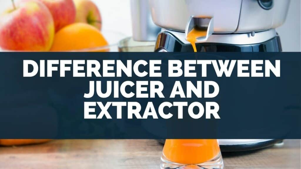 Difference Between Juicer and Extractor