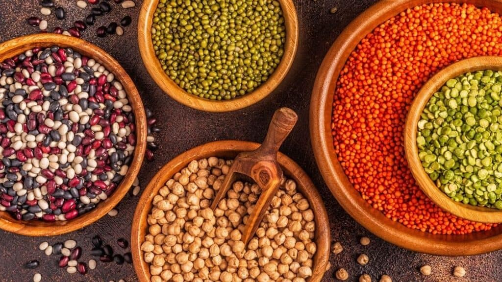 Do legumes cause a leaky gut