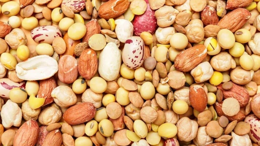 Legumes and nuts examples