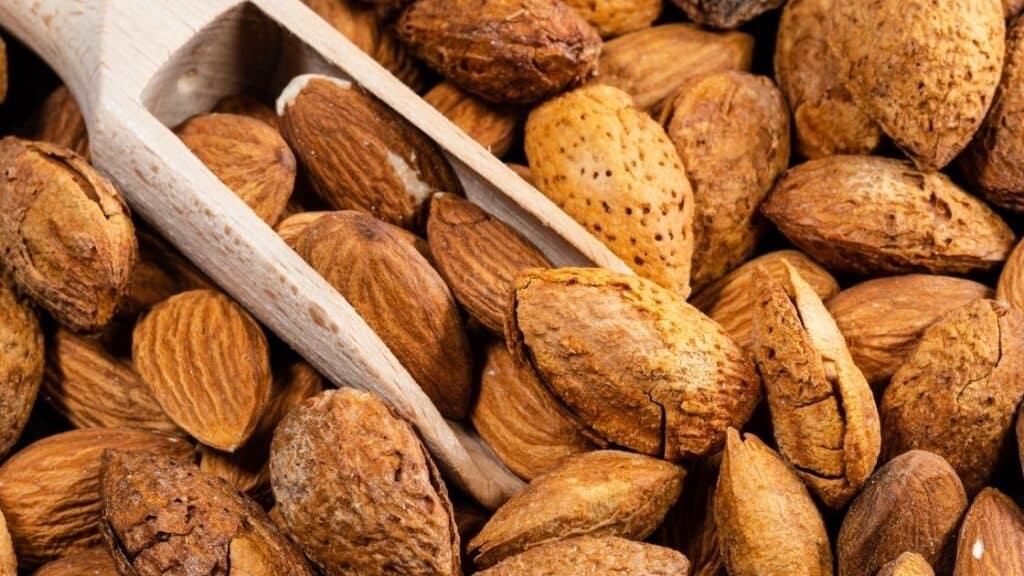 Walnut a nut or a drupe